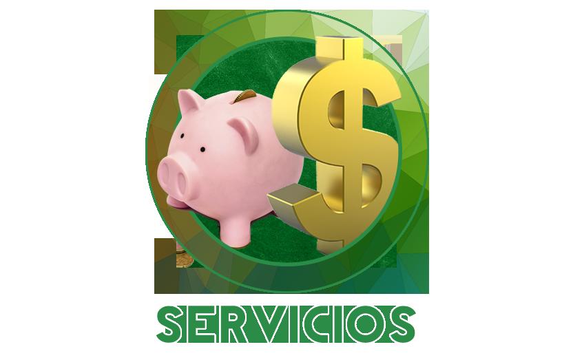 Servicios 21 B