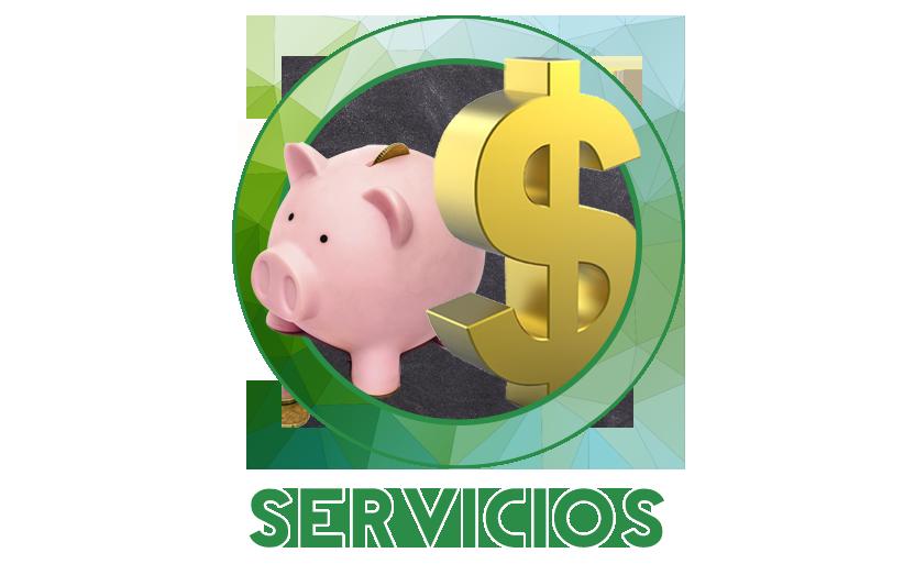 Servicios 21